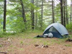 Camping fees