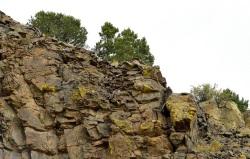 rocky terrariums